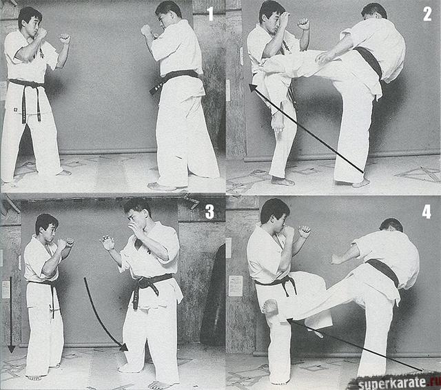 Хироки Куросав - техника лоу-кик