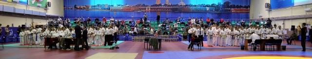 III Фестиваль единоборств «Турнир памяти В.А. Соловьева»