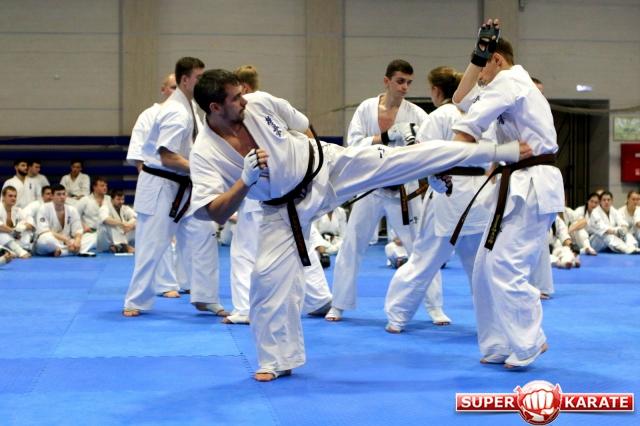 Иппон (нокаут)- чистая победа в киокушинкай каратэ