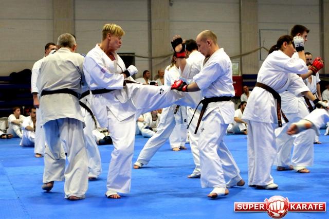Завершился womens world open karate championship 2011, на верхней ступени пьедестала российская спортсменка