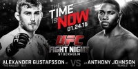 �������� ����-���� UFC on Fox 14: Gustafsson vs. Johnson
